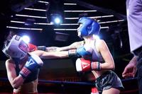 Fluxx Industry Boxing 3 Presented by VictoryMMA 12-8-14-56