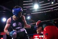 Fluxx Industry Boxing 3 Presented by VictoryMMA 12-8-14-181