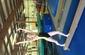 Twisters Gymnastics-36