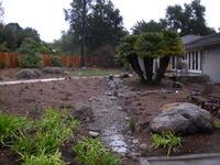 Montecito bioswale during 1 inch per hour rain