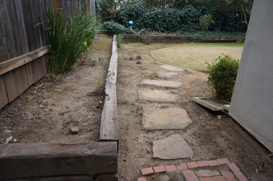Before: back yard