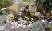 Water Features-20