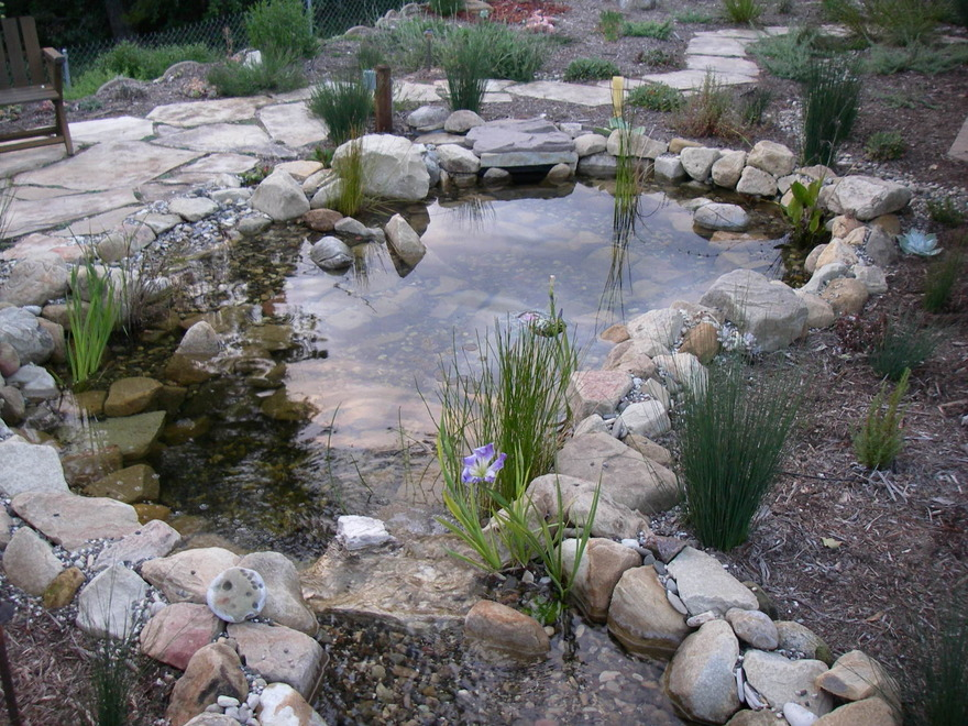 Water Features Wilson Environmental Contracting