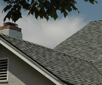 Composition Shingles-2