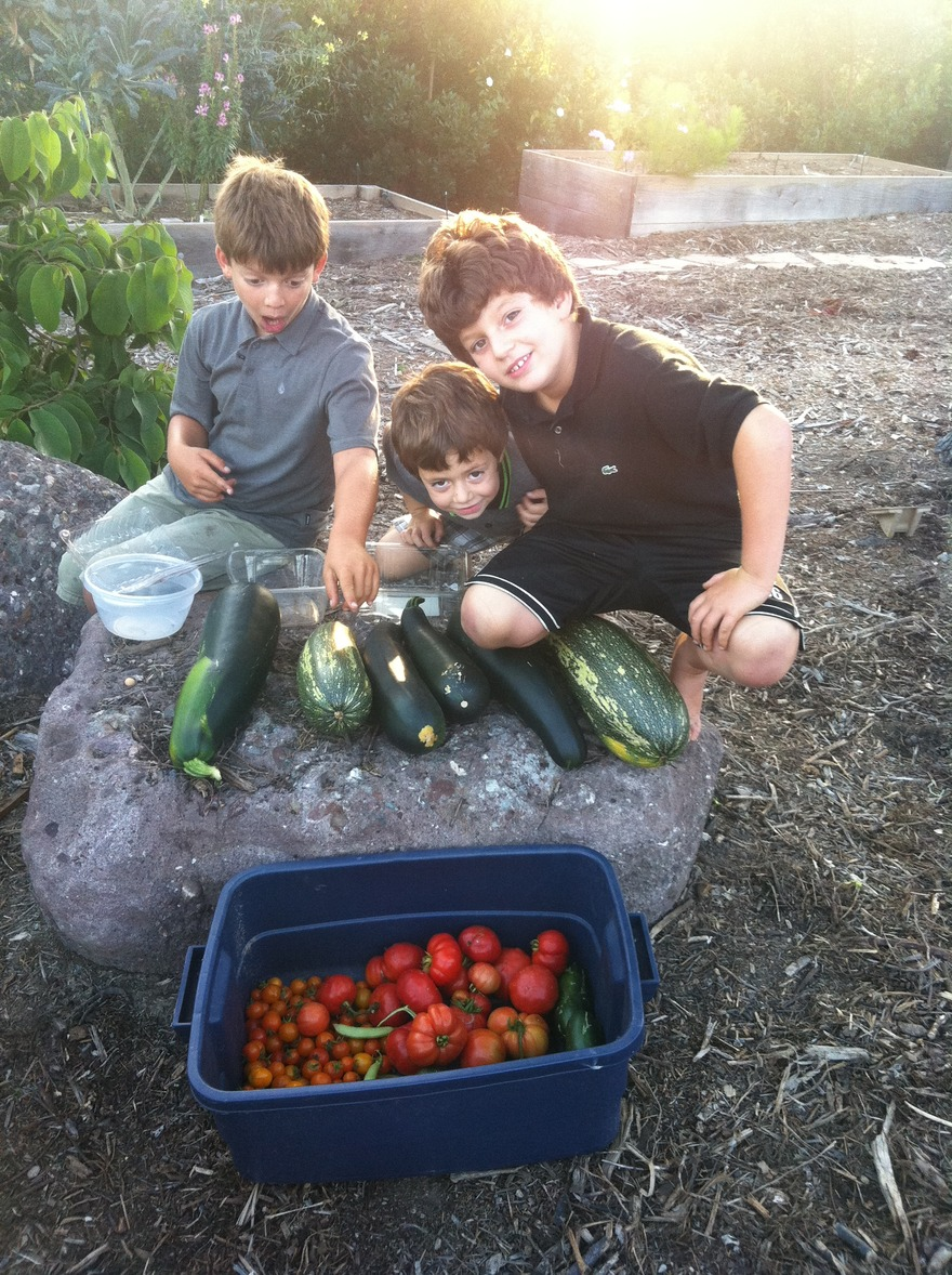 Home Food Forest Children
