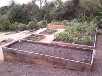 Raised Planting Bed Complex