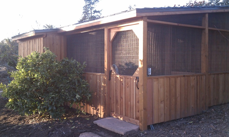 Deluxe Chicken Coop