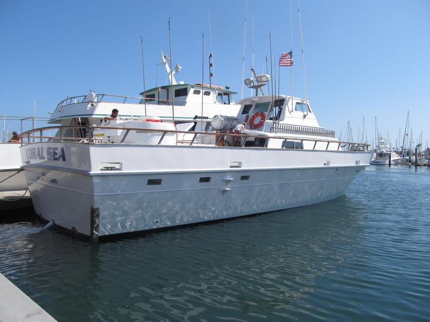 Coral Sea - Stardust Sportsfishing Santa Barbara Ventura