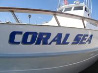 The Coral Sea-5