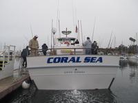 The Coral Sea-18