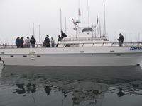 The Coral Sea-19