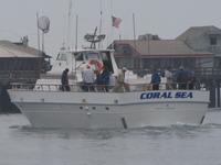 The Coral Sea-22