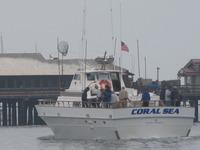 The Coral Sea-23