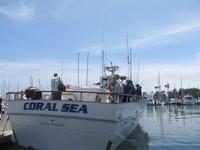 The Coral Sea-29