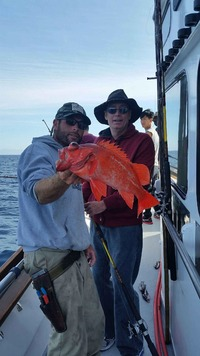 10.24.15 Rockfish & Whitefish Chanel lsands Santa Barbara Harbor-5
