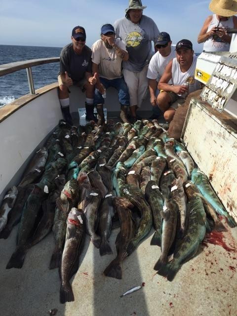 10.24.15 Limits Of Whitefish & Lingcod! Santa Barbara Chanel Islands-2