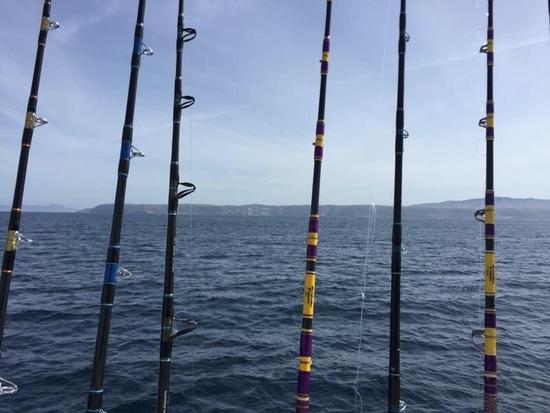 10.24.15 Limits Of Whitefish & Lingcod! Santa Barbara Chanel Islands-7