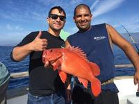 10.23.15 Excellent Santa Barbara Coastal Fishing-7