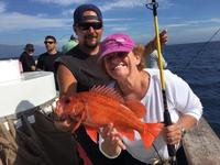 10.23.15 Excellent Santa Barbara Coastal Fishing-9