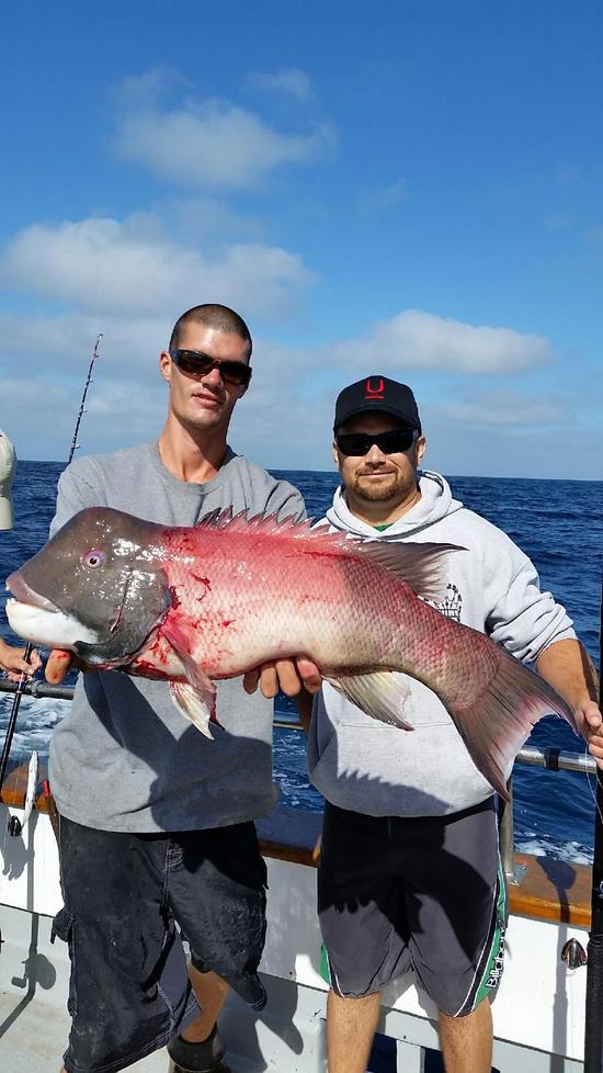 10.22.15 Whitefish & Lingcod Santa Barbara-1