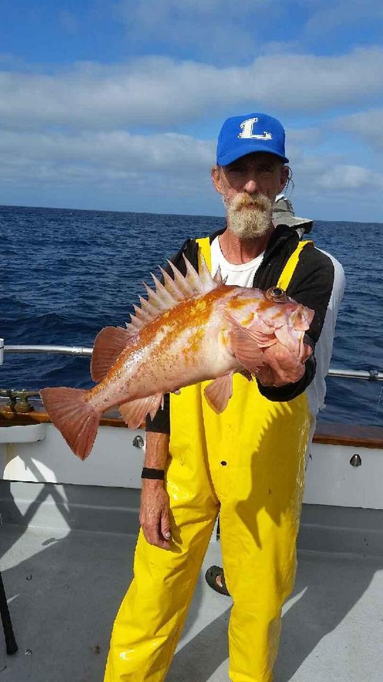 10.22.15 Whitefish & Lingcod Santa Barbara-6