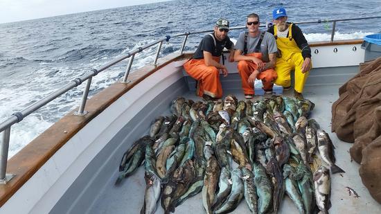 10.22.15 Whitefish & Lingcod Santa Barbara-9