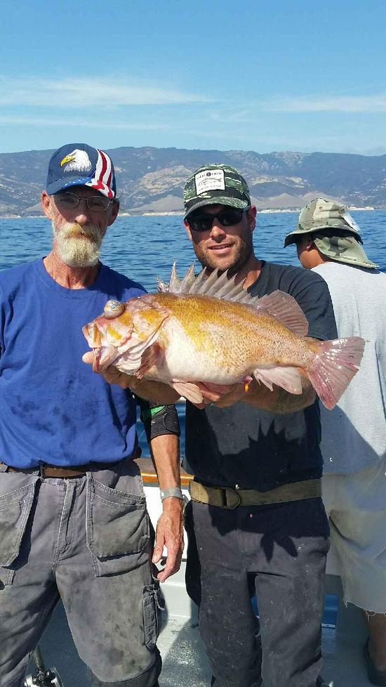 10.17.15 Rockfish Yellowtail Lingcod Channel islands-2