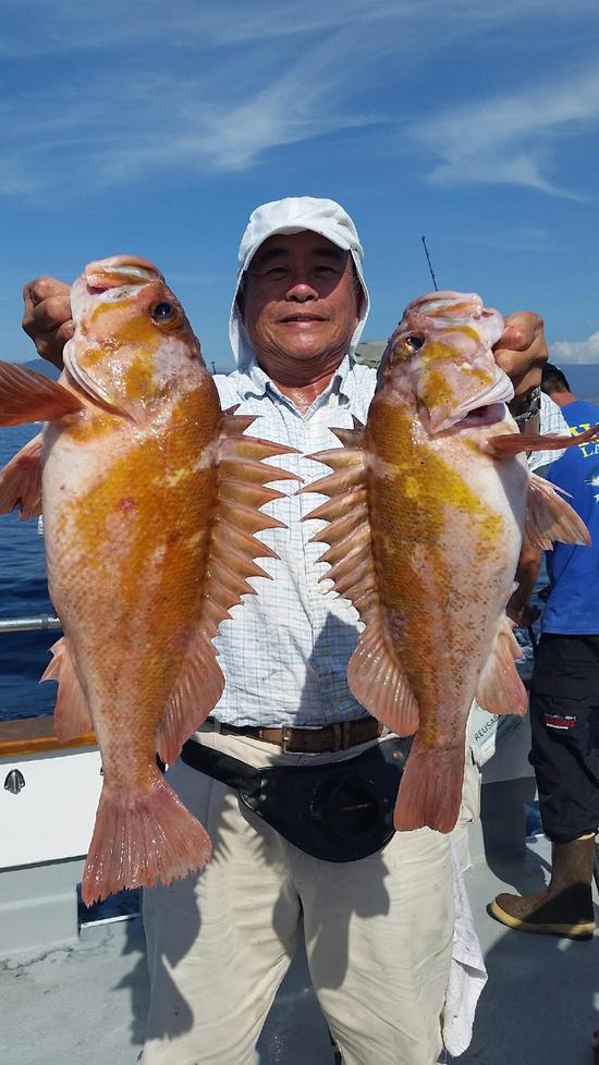10.17.15 Rockfish Yellowtail Lingcod Channel islands-3