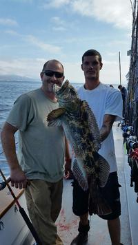 10.17.15 Rockfish Yellowtail Lingcod Channel islands-6