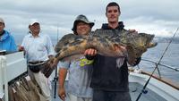 10.17.15 Rockfish Yellowtail Lingcod Channel islands-8