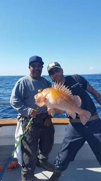 10.18.15 Rockfish limits up the Coast-2