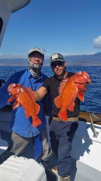 10.18.15 Rockfish limits up the Coast-4
