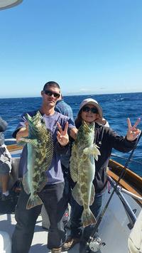 11.1.15 Nice Fish, Hard Work Channel Islands-1