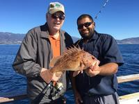 11.6.15 1/2 day fishing in Santa Barbara-2