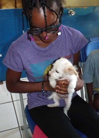 400 Dogs, Cats Neutered and Spayed -Taj Weekes' Animal Agenda