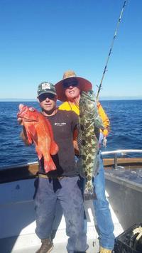 11.7.15 Lingcod Frenzy Santa Barbara, Channel Islands-5