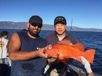 11.13.15 Good Mixed Bag in Santa Barbara-1