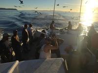 11.22.15 Santa Rosa Island fills the bags!-5