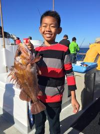 11.23.15 More Lingcod!-6