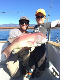 11.29.15 Santa Barbara 1/2 day Fishing-3