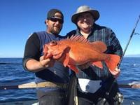 11.30.15 Big Rockfish-3