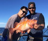 11.30.15 Big Rockfish-8