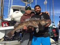11.30.15 Big Rockfish-13