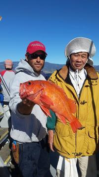 12.4.15 rockfish limits-1