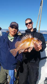 12.4.15 rockfish limits-6