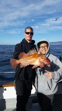12.4.15 rockfish limits-9