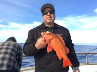 12.6.15 1/2 day rockfish limits-1