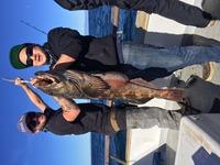 12.16.15 Izorline Trip fishing at Channel Islands-5