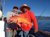 12.29.15 fishing up the coast!-2