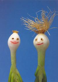 Friendly Scallion